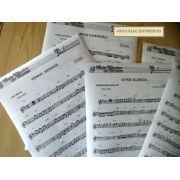 Apostila de Partituras Cat�licas + CD de Playbacks MP3 e Midis (Volume 1)